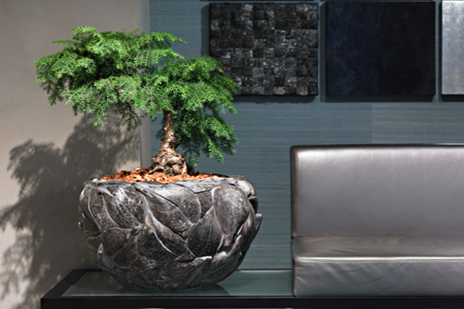 Plants as decoration, care and pots by Luwasa Switzerland